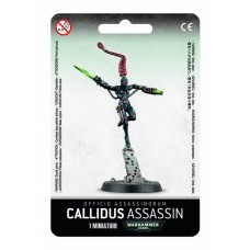 OFFICIO ASSASSINORUM CALLIDUS ASSASSIN